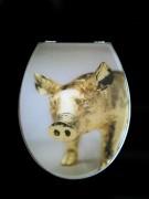 WC Sitz Schwein