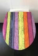 WC Sitz Duroplast Colours