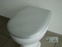 WC Sitz Silbermetallic Olfa